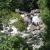 cachoeira antonio olimpio